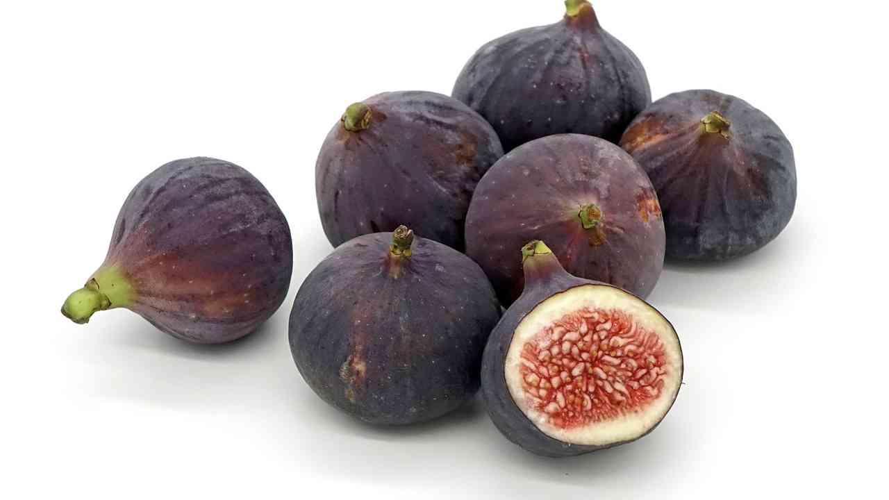 Fig Meaning in Hindi फिग का हिंदी अर्थ