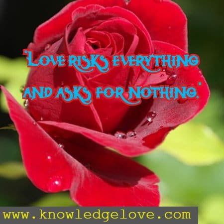 wise inspirational quotes on love