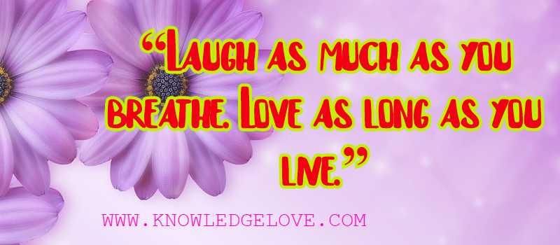 Love Quotes Rumi
