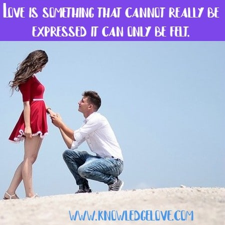 Love for Life Quotes