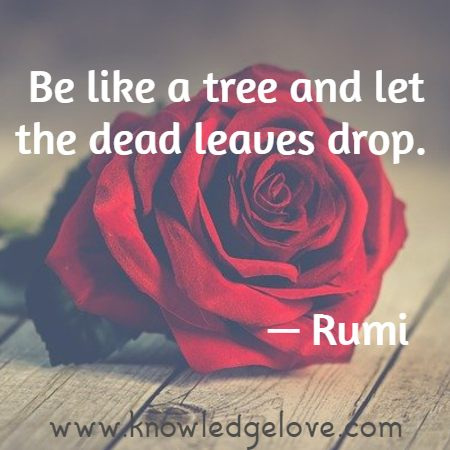 Be like a tree and let the dead leaves drop.