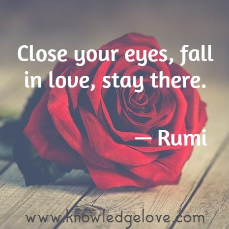 Close your eyes, fall in love, stay there.