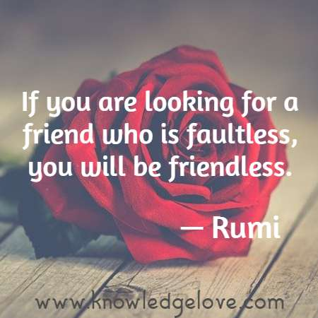 If you are looking for a friend who is faultless, you will be friendless.