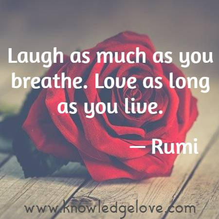 Laugh as much as you breathe. Love as long as you live.