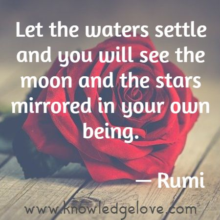 Let the waters settle and you will see the moon and the stars mirrored in your own being.