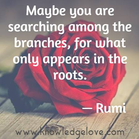 Maybe you are searching among the branches, for what only appears in the roots.