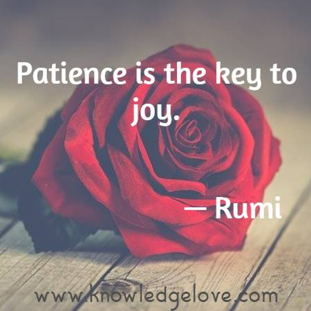 Patience is the key to joy.