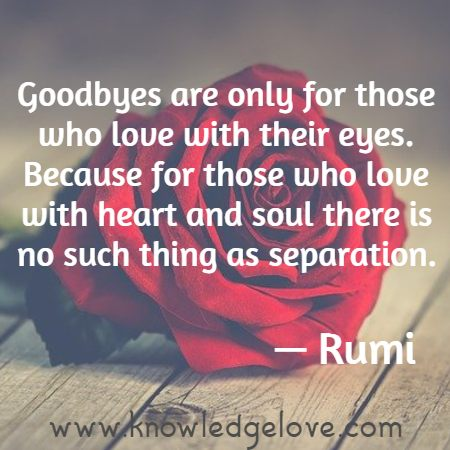 Rumi Quotes on Lovers