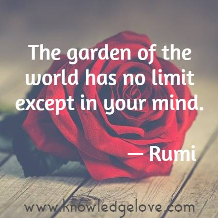 The garden of the world has no limit except in your mind.