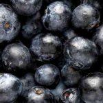 Acai Berry Fruits