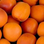 fruits apricots