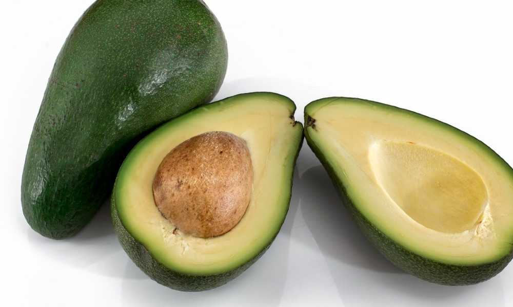 Fruits Name Avocado