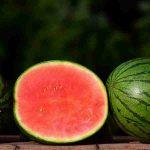 Watermelon, Tarbooj