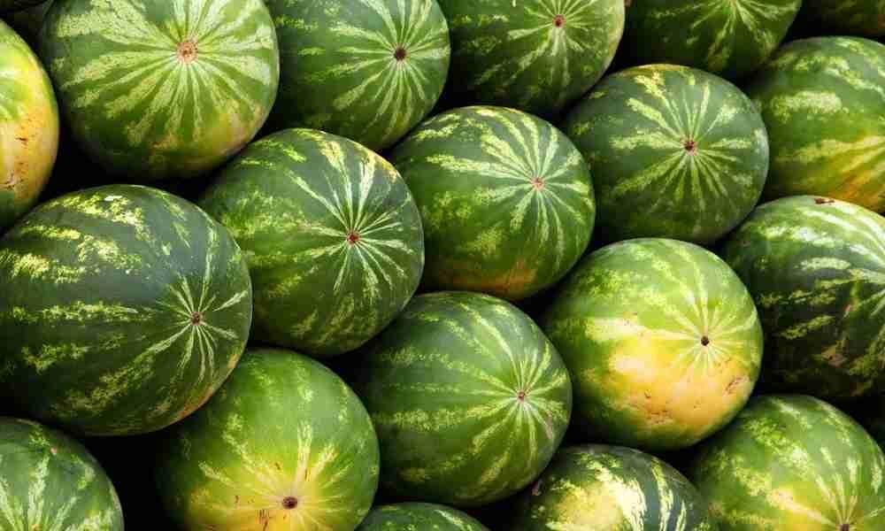 Xigua fruits