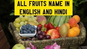 all fruits name is hindi and english with picture