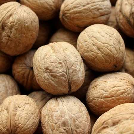 dry fruits name Walnuts