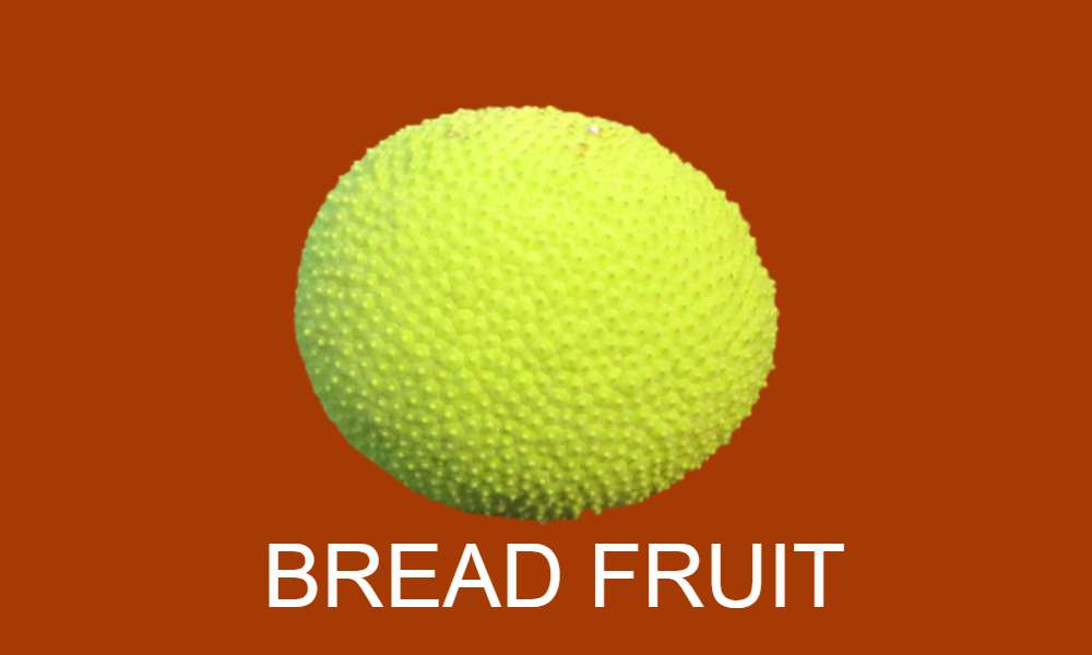 Fruits Name in Hindi and English with picture