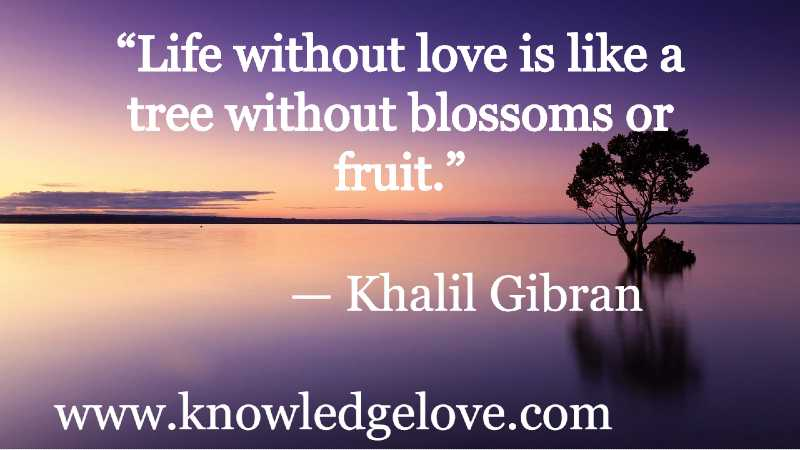The Best Quotes of All Time about Love