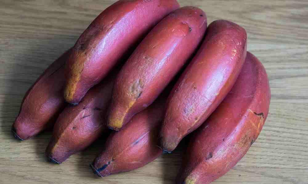 लाल केला (Lal Kela) - Red Banana