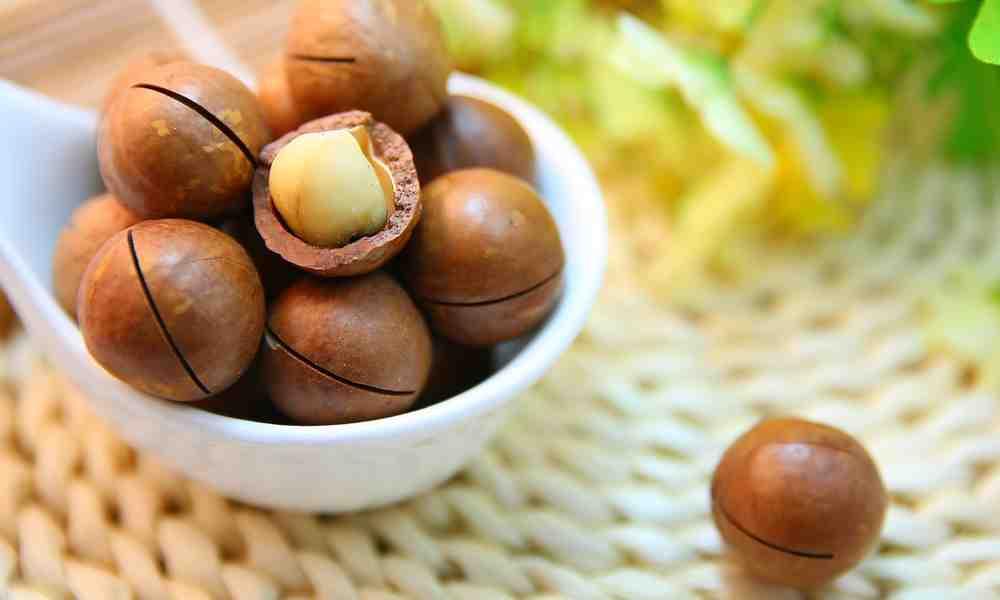 मकाडेमिया नट्स - Macadamia Nuts - अखरोट का एक प्रकार