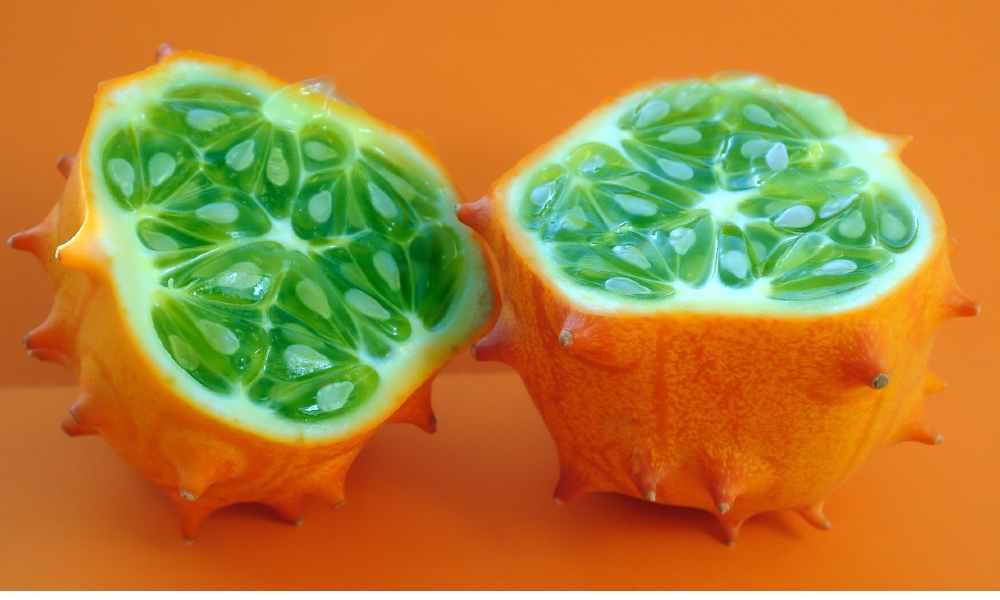 fruits name in hindi - kiwano - horned melon