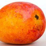 fruits name in hindi - mango aam