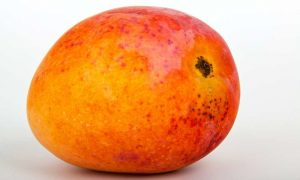 fruits name in hindi - mango aam