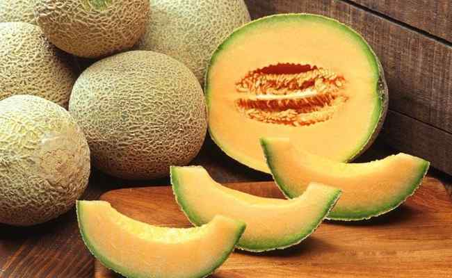 Cantaloupe Meaning in Hindi