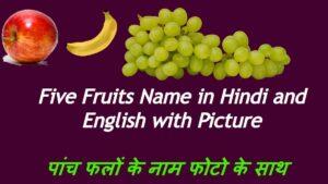 Five Fruits Name