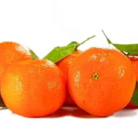 Five Fruits Name - Orange - santra