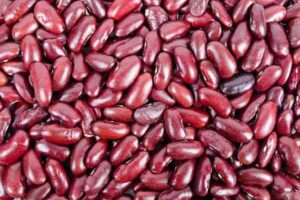 Kidney bean meaning in hindi