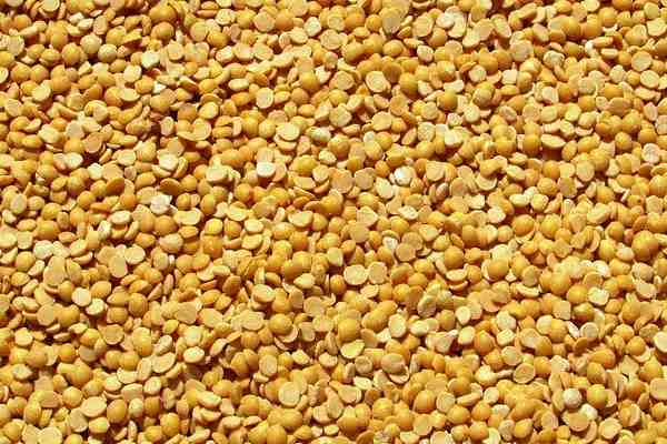 Pigeon Pea Meaning in Hindi