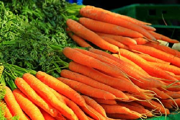 Five Vegetables Name - Carrot
