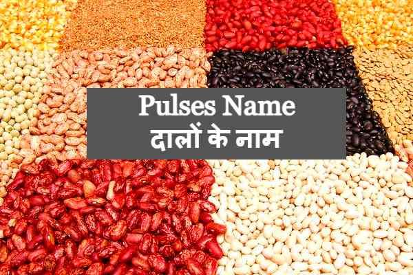 Pulses Name Dalon Ke nam